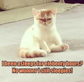 I Need A Few More Hours Of Sleeps!