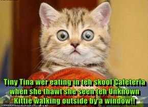 Tiny Tina wer eating in teh skool Cafeteria when she thawt she seen teh Unknown Kittie walking outside by a window!!