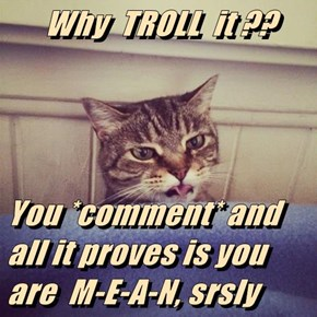 Why  TROLL  it ??  You *comment* and all it proves is you are  M-E-A-N, srsly