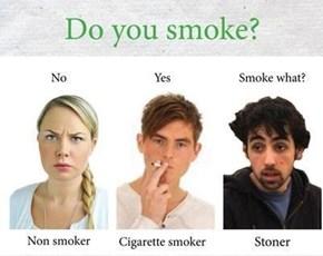 Not Cigarettes, Bro