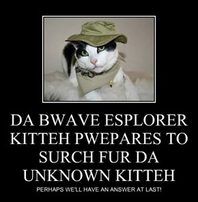 DA BWAVE ESPLORER KITTEH PWEPARES TO SURCH FUR DA UNKNOWN KITTEH