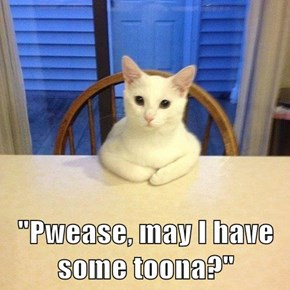 """Pwease, may I have some toona?"""