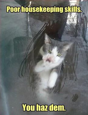 Subtle Cat Is......Nevermind.