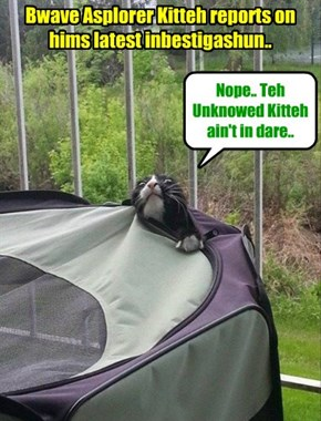 "Teh Bwave Aslorer Kitteh elminates anudder hiding place for teh Unknowed Kitteh.. ""I iz closin' in on dat kittie.. Dat's for shur!"" sez teh Bwave Asplorer Kittie.."