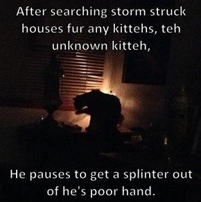 After searching storm struck houses fur any kittehs, teh unknown kitteh,    He pauses to get a splinter out of he's poor hand.