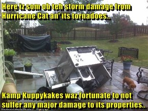 Here iz som ob teh storm damage from Hurricane Cat an' its tornadoes..  Kamp Kuppykakes waz fortunate to not suffer any major damage to its properties..
