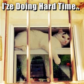 I'ze Doing Hard Time..
