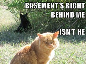 BASEMENT'S RIGHT BEHIND ME ISN'T HE