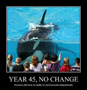 YEAR 45, NO CHANGE