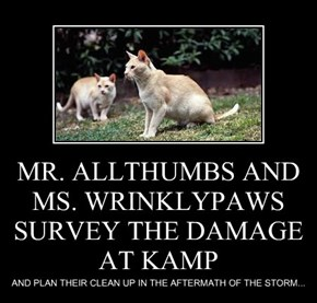 MR. ALLTHUMBS AND MS. WRINKLYPAWS SURVEY THE DAMAGE AT KAMP