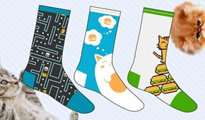 Preorder Your Cheezburger + Betabrand Socks Today