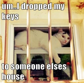 um..I dropped my keys  to someone elses house