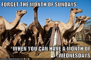 FORGET THE MONTH OF SUNDAYS  WHEN YOU CAN HAVE A MONTH OF WEDNESDAYS