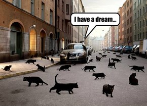 Martin Luther King comes back as a Black Cat
