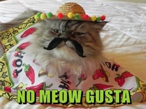 NO MEOW GUSTA