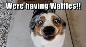 Were having Waffles!!