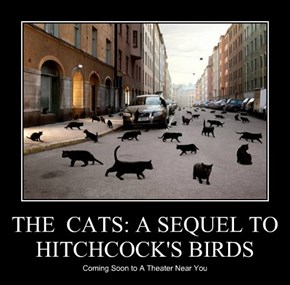 THE  CATS: A SEQUEL TO HITCHCOCK'S BIRDS