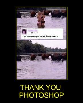THANK YOU, PHOTOSHOP