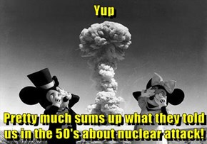Yup  Pretty much sums up what they told us in the 50's about nuclear attack!