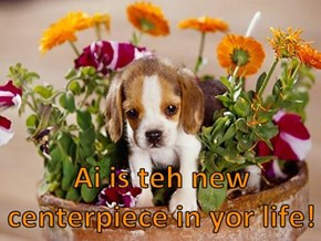 Ai is teh new centerpiece in yor life!