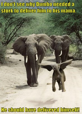 I don't see why Dumbo needed a stork to deliver him to his mama.  He should have delivered himself!