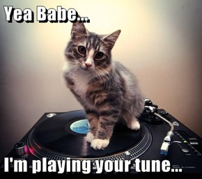 Yea Babe...  I'm playing your tune...