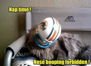 Nap time !