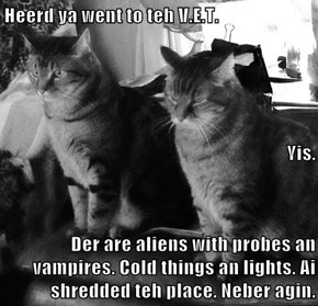 Heerd ya went to teh V.E.T.  Yis.  Der are aliens with probes an vampires. Cold things an lights. Ai shredded teh place. Neber agin.