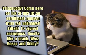 KKPS:  Unknowed Kitteh Enrollment Request