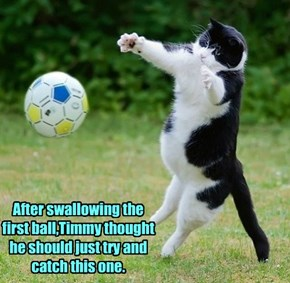 After swallowing the first ball,Timmy thought he should just try and catch this one.