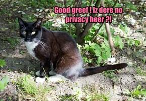 Good greef ! Iz dere no privacy heer ?!