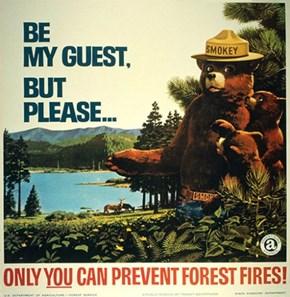 I love Smokey the Bear!