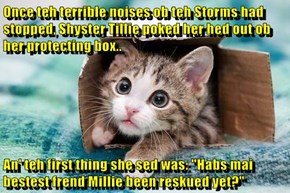 "Once teh terrible noises ob teh Storms had stopped, Shyster Tillie poked her hed out ob her protecting box..  An' teh first thing she sed was: ""Habs mai bestest frend Millie been reskued yet?"""