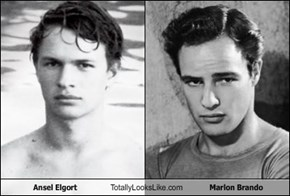 Ansel Elgort Totally Looks Like Marlon Brando