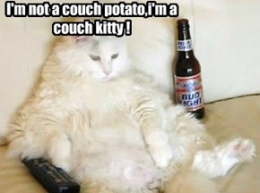 I'm not a couch potato,i'm a couch kitty !