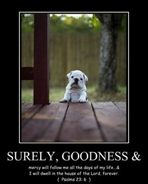 SURELY, GOODNESS &