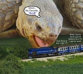 Slow & Steady Eats Da Train