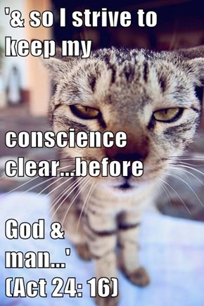 '& so I strive to keep my conscience clear...before God & man...'                           (Act 24: 16)