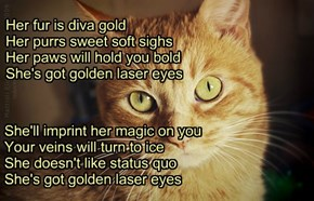 """Golden Laser Eyes"" TTO ""Bette Davis Eyes"" by Kim Carnes"