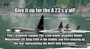 Give it up for the A 23's y'all!