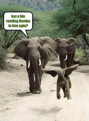 haz u bin reeding Dumbo to him agin?
