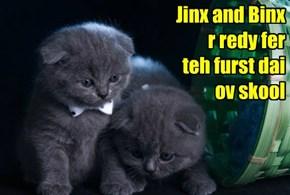 Jinx and Binx r redy fer    teh furst dai  ov skool