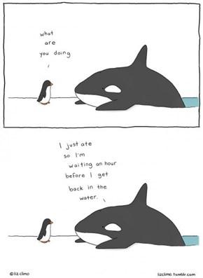 The Whale's Wisdom