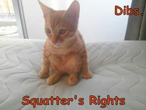 Dibs.       Squatter's Rights