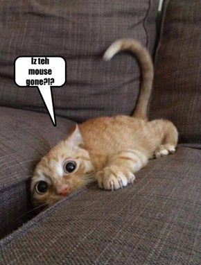 Iz the mouse gone?!?