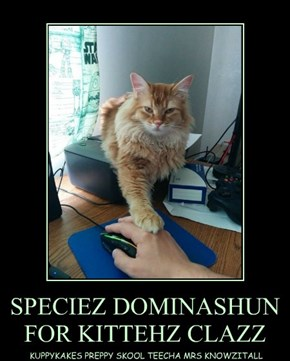 SPECIEZ DOMINASHUN FOR KITTEHZ CLAZZ