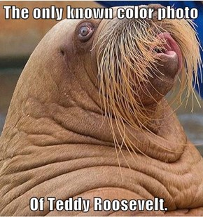 The only known color photo          Of Teddy Roosevelt.