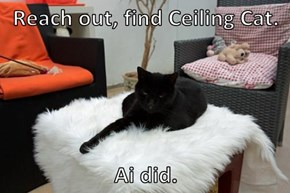 Reach out, find Ceiling Cat.   Ai did.
