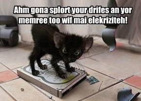 Ahm gona splort your drifes an yor memree too wif mai elekriziteh!