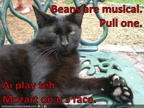 Beans are musical.                                                   Pull one.   Ai play teh                                                    Mozart on u's face.